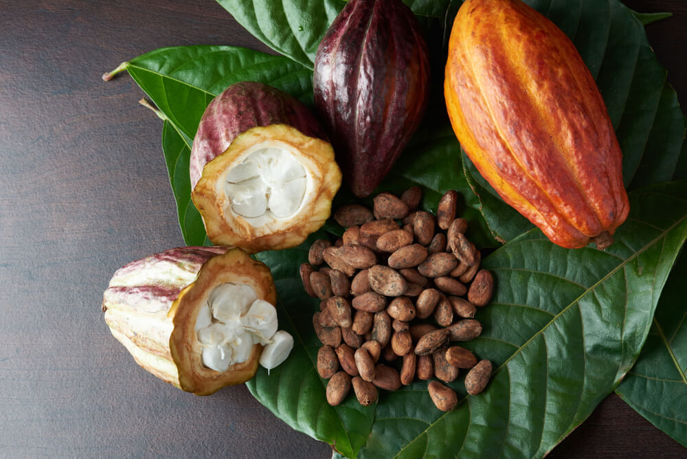 What are the health benefits of raw chocolate?