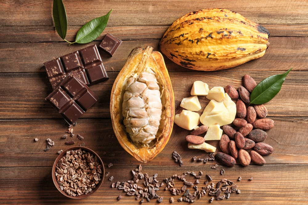 We reveal the secret of COCOA vegan chocolate